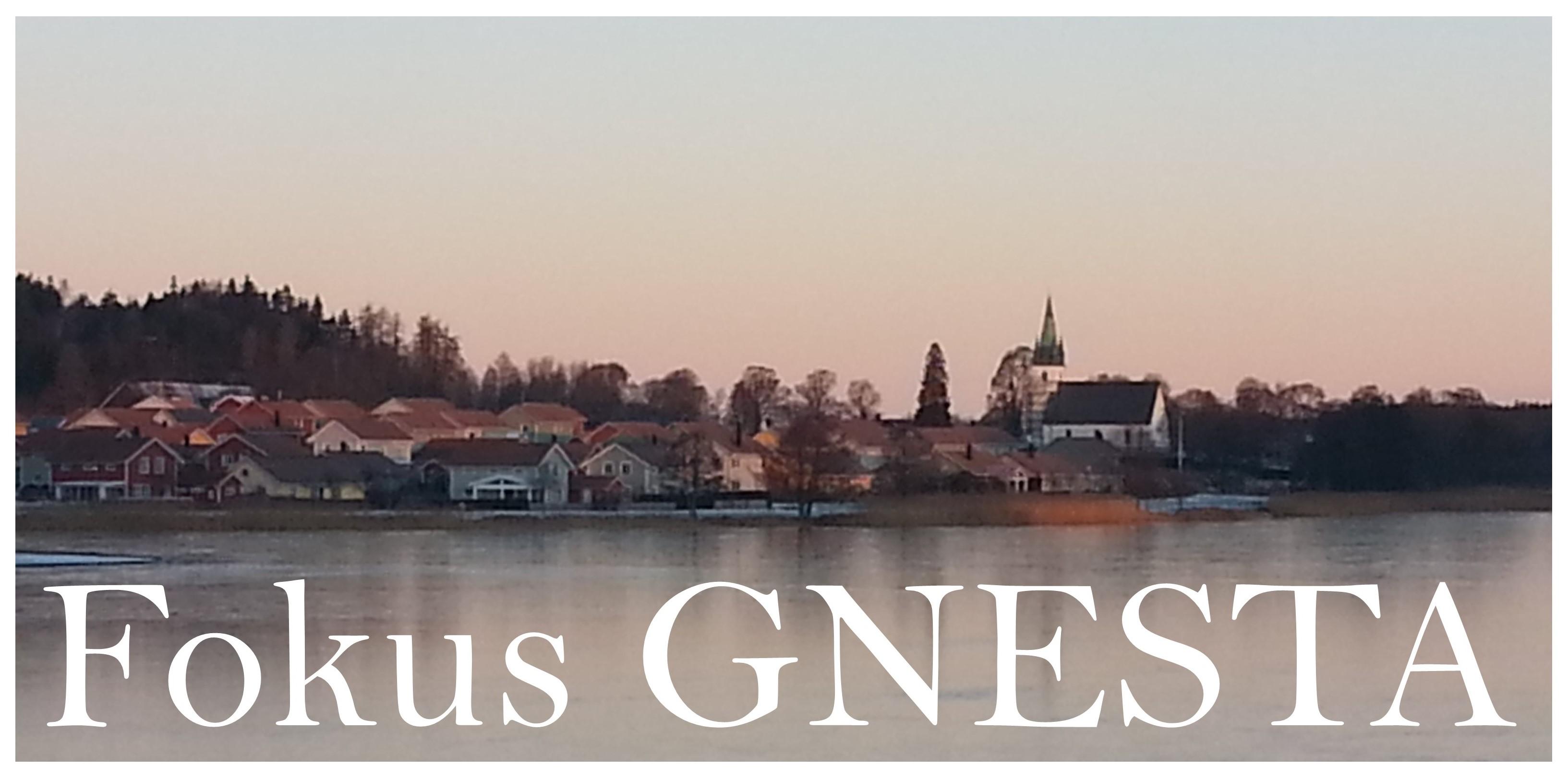Bild över sjön mot Frustuna kyrka med texten Fokus Gnesta. Foto: H. Karlsson/Arkiv Sörmland